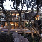 Under Pohutukawa House by Herbst Architects