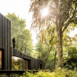 Black Wood House by Marchi Architects