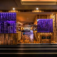 Hard Rock Hotel by Mister Important Design