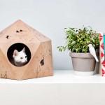 CatCube by Delphine Courier