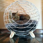 Contemporary Cat Bed by Lord Paw