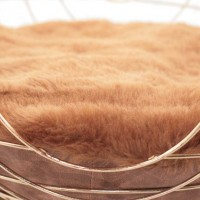Contemporary Cat Bed By Lord Paw Contemporist