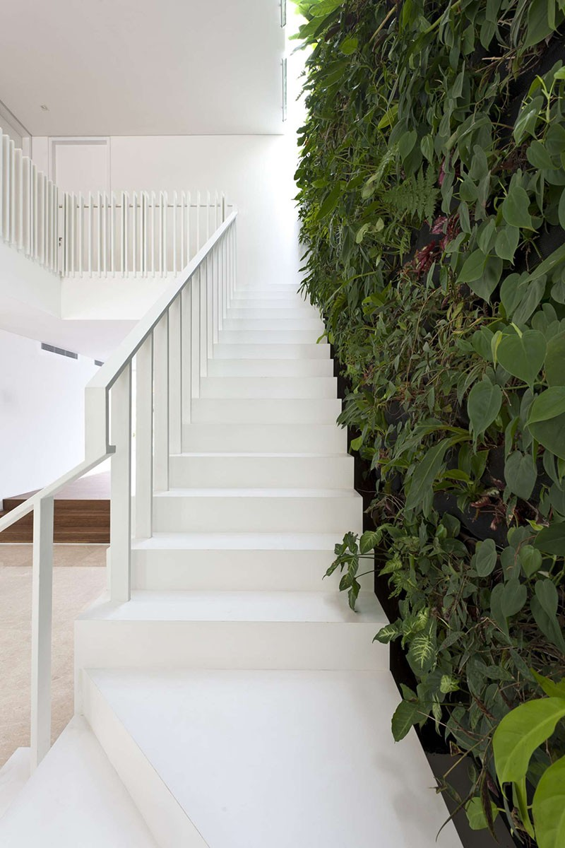 A green wall next to the stairs