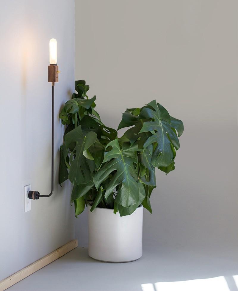 Wald Plug Lamp by Feltmark