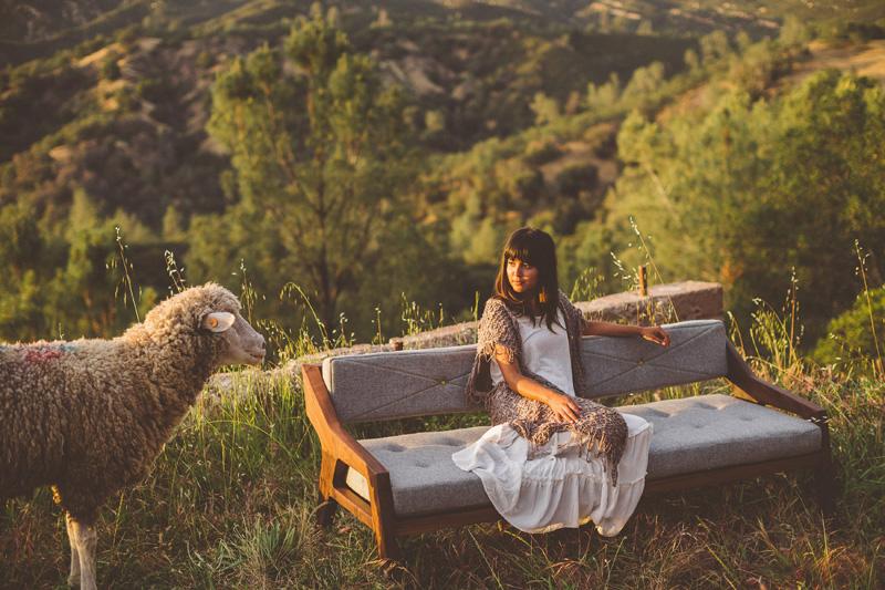 The Emerson Sofa By Jory Brigham