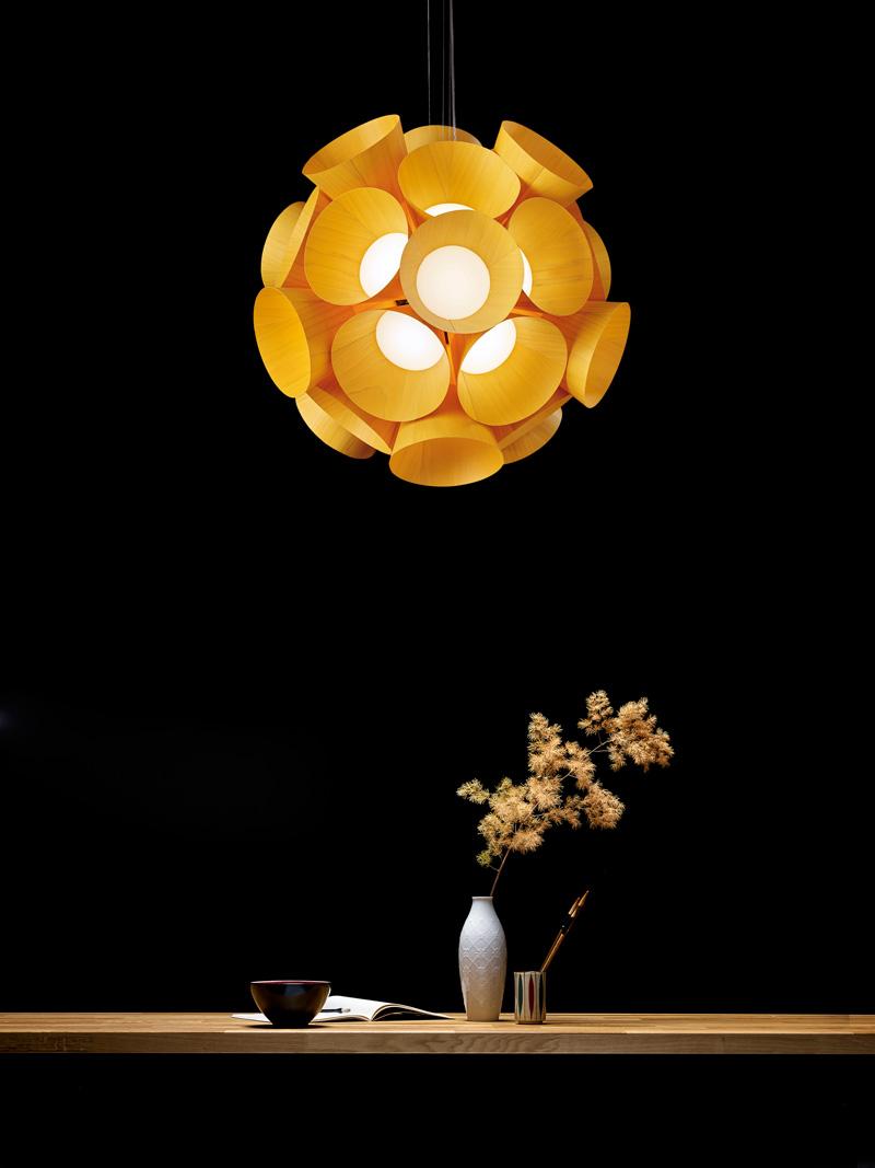 Burkhard Dämmer Designs Dandelion For LZF