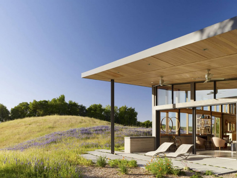 The Caterpillar House By Feldman Architecture