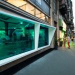 KISSMIKLOS Design A Storefront To Look Like An Aquarium