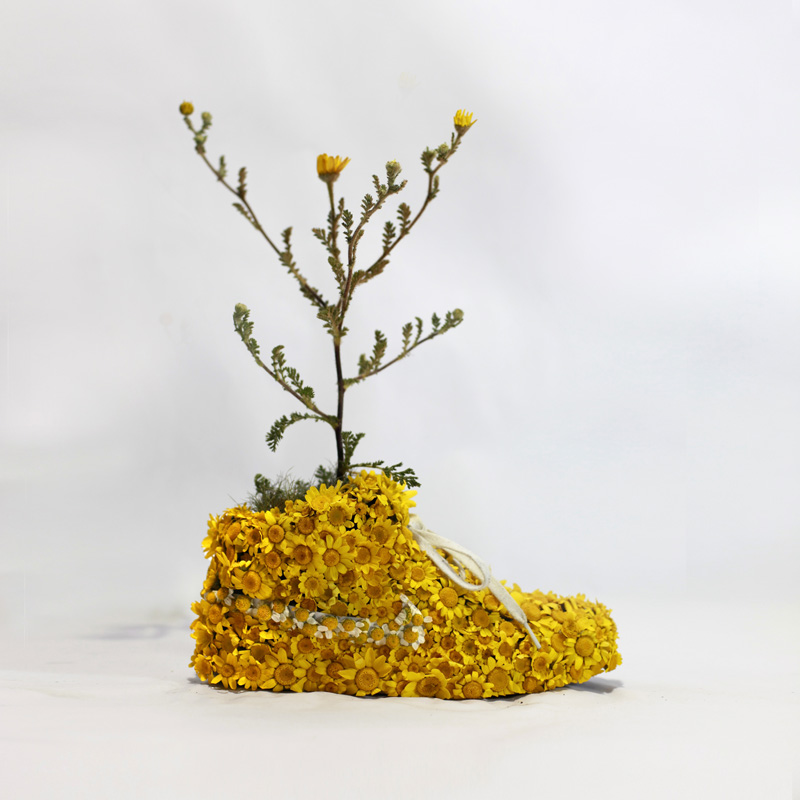 Just Grow It By Christophe Guinet - Monsieur Plant