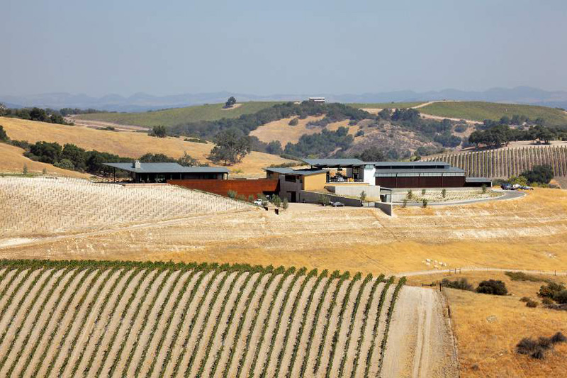 Law Winery By BAR Architects