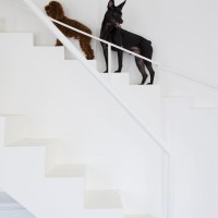This Home Has Separate Small Stairs For Small Dogs
