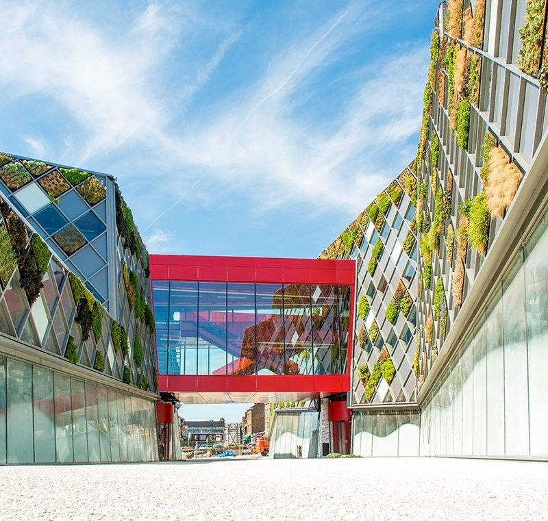 This City Hall In Belgium Is Covered In A Patchwork of Green