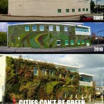 The Evolution Of A Green Wall
