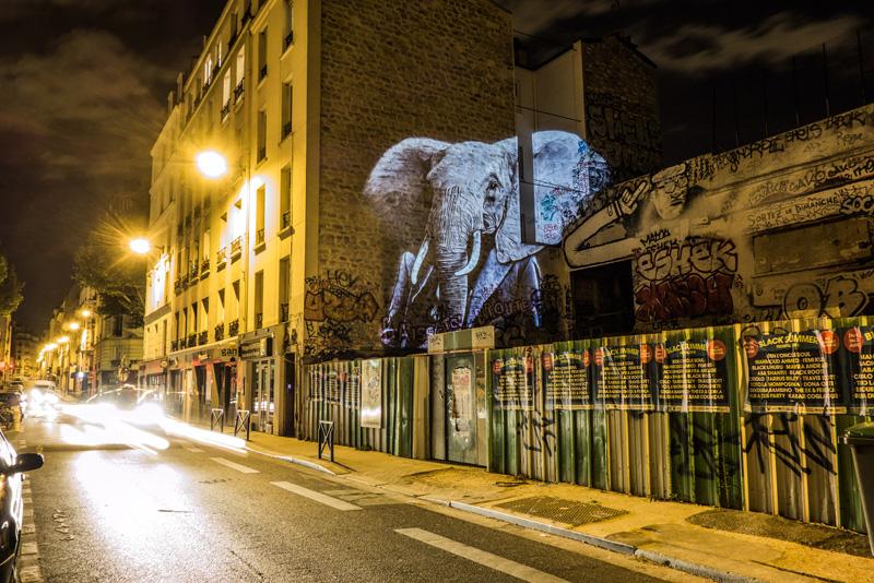 Safari Urbain by Julien Nonnen
