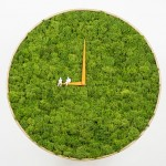 This clock says it's always time for moss
