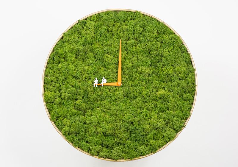 Moss Clock by Noktuku
