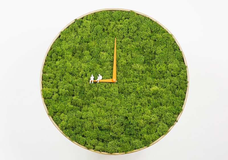 Moss Clock by Noktuku