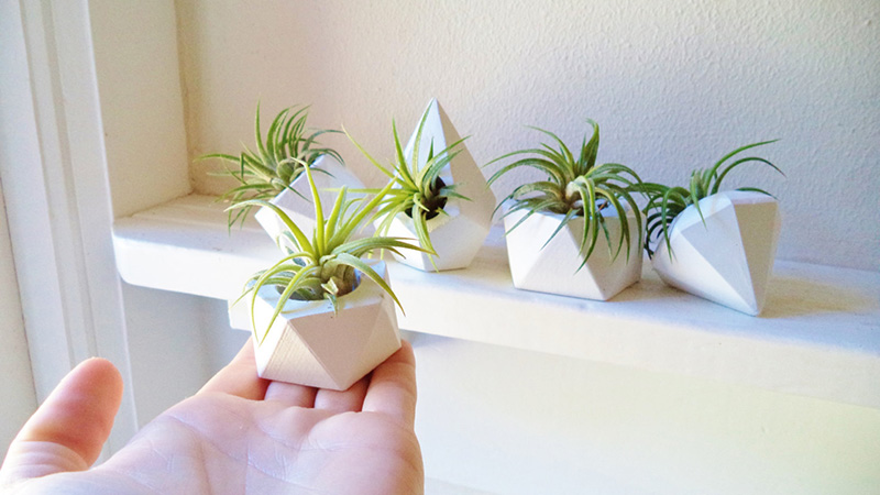 These small mini planters by Redwood Stoneworks are great for displaying a collection of air plants. #Planters #SmallPlanters #Plants #Decor #HomeDecor #GiftIdea