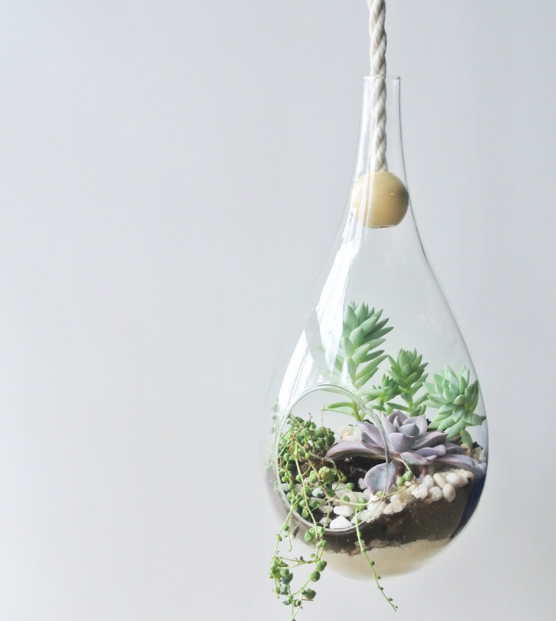 A modern glass dewdrop hanging planter by theZenSucculent. #Planters #SmallPlanters #Plants #Decor #HomeDecor #GiftIdea #HangingPlanter