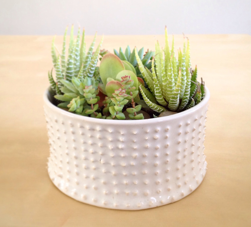 A handmade spiked terrarium in white by aveshamichael. #Planters #SmallPlanters #Plants #Decor #HomeDecor #GiftIdea