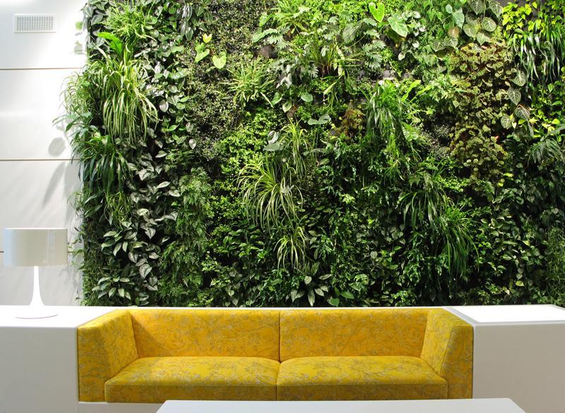 8 Benefits of Green Walls