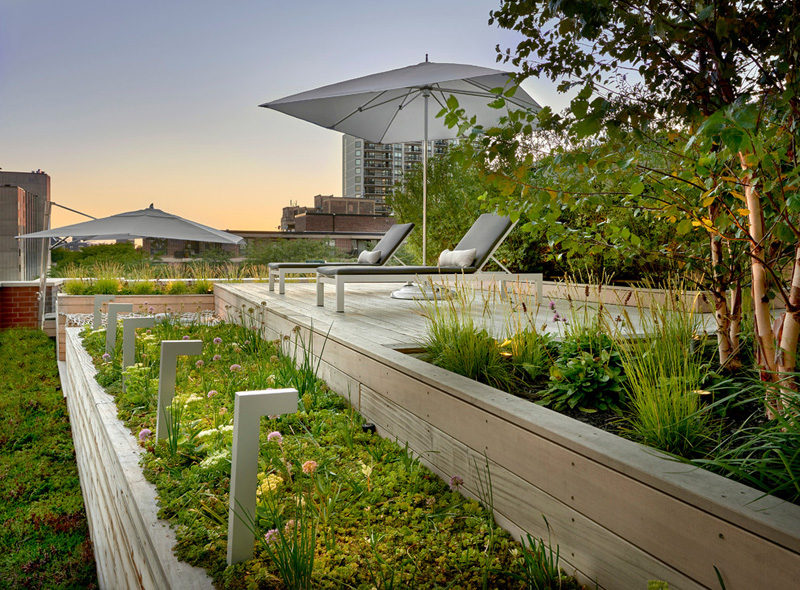 7 Design Lessons To Learn From This Awesome Roof Deck In Chicago // Play with heights -- By designing the space with different levels, it adds visual interest and allows for garden beds to be included.