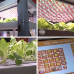 The Farm Cube uses LED lights to grow leafy greens inside your home