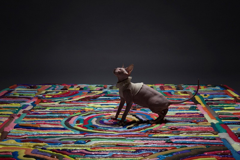 These Colorful Carpets Are Made From Soft Foam
