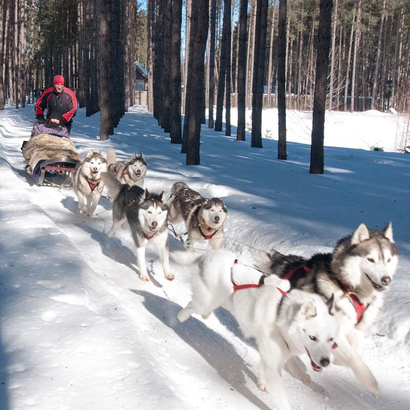 5 Alternative Ski Resort Activities That Don't Involve Skiing (or Snowboarding)