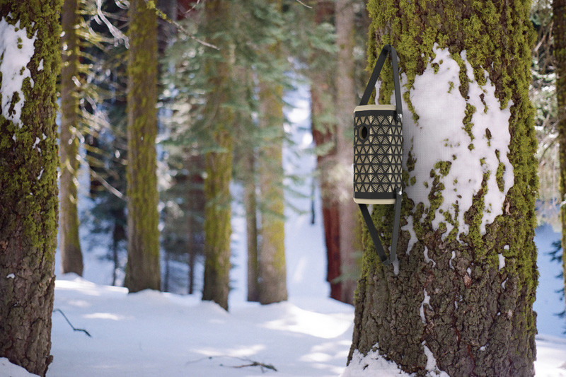 The design of this birdhouse helps Chickadees survive the winter