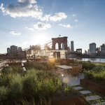 This rooftop garden in New York is like a meadow in the sky