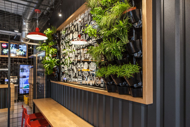 Good House Plants