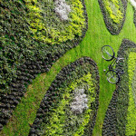 A bike was added to this huge green wall for a bit of whimsical fun