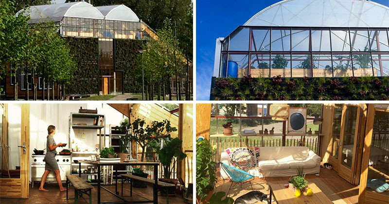 home greenhouse this family lives inside a giant greenhouse contemporist