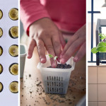 IKEA is introducing a new indoor gardening series