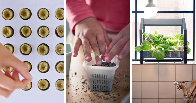 The KRYDDA/VÄXER series, an indoor gardening series by IKEA