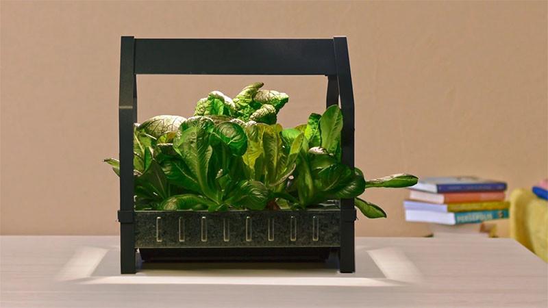 The KRYDDA/VÄXER series, an indoor gardening series by IKEA