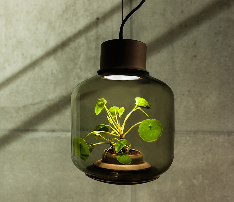 The Mygdal Plantlamp designed by Studio We Love Eames