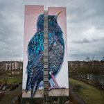 Two amazing artists have painted a huge bird on this building in Germany