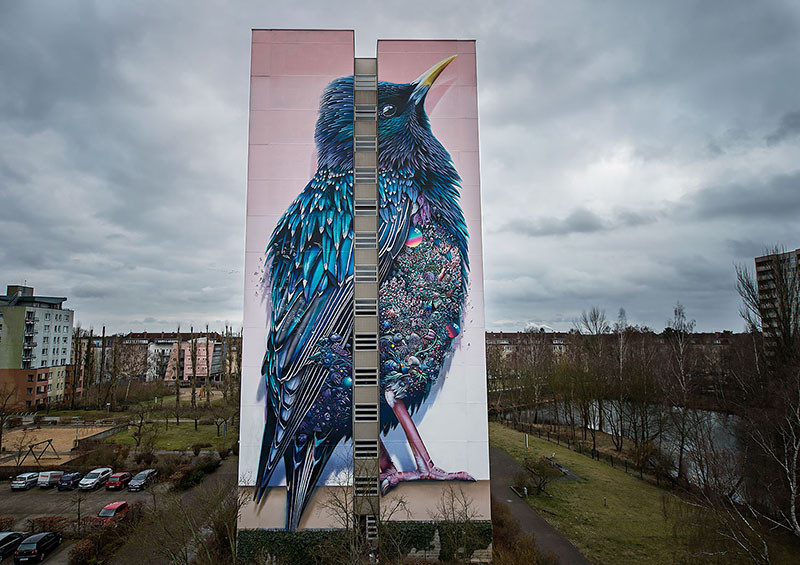 The Starling, by Collin van der Sluijs and Super A