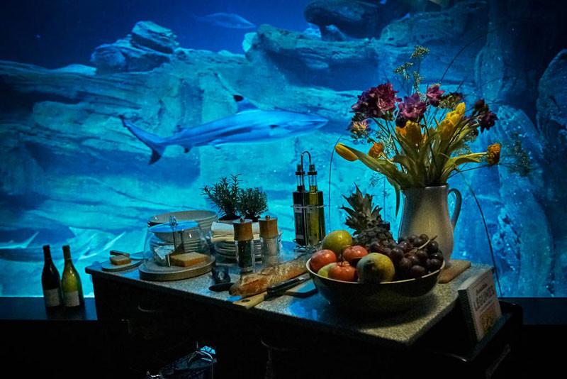 Underwater Room at Aquarium de Paris, via Airbnb
