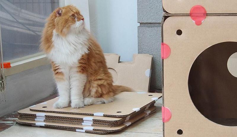 BoxKitty, a modular cardboard cat castle