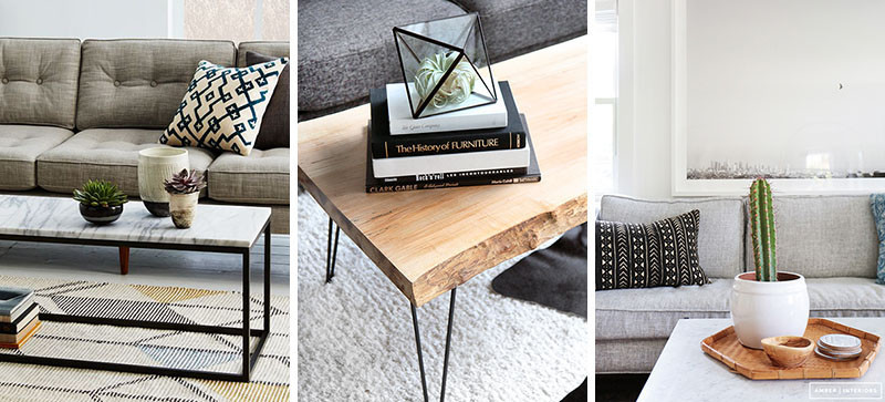 11 of the best plants to have on your coffee table | contemporist Cafe Table Centerpieces