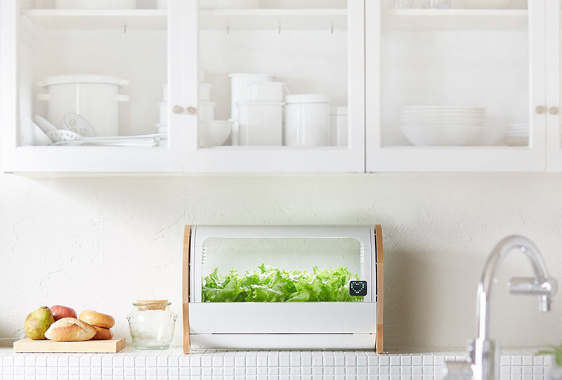 This modern countertop hydroponic garden lets you grow food from a single seed. #HydroponicGarden #CountertopGarden #HerbGarden #VegetableGarden