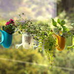 These cute little planters are designed to stick to almost any surface like a gecko