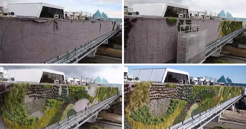 Watch this timelapse of the largest living wall in North America being made