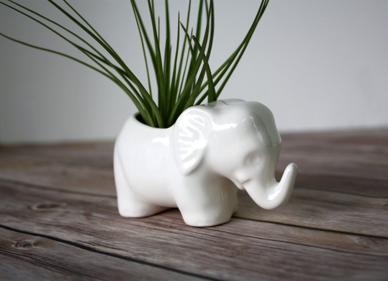 12 Elegant Ways To Bring Air Plants Into Your Home // Add a touch of whimsy to your decor when displaying your air plants, with this tiny ceramic elephant. #AirPlants #ModernHomeDecor #Planters #ModernDecor