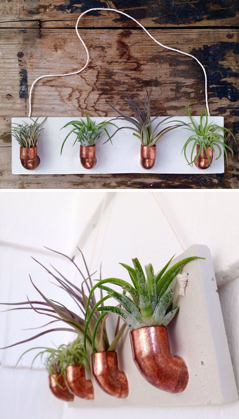 12 Elegant Ways To Bring Air Plants Into Your Home // This copper and concrete air plant holder gives your plants a modern home on the wall. #AirPlants #ModernHomeDecor #Planters #ModernDecor