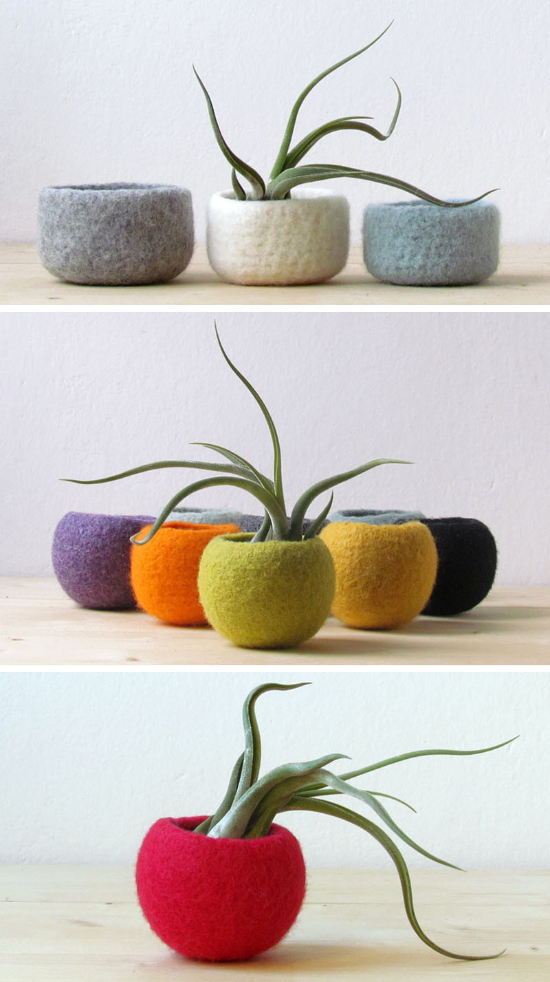 12 Elegant Ways To Bring Air Plants Into Your Home // These felted bowls make great holders for air plants, and because they come in a wide selection of colors, they can match any color scheme. #AirPlants #ModernHomeDecor #Planters #ModernDecor