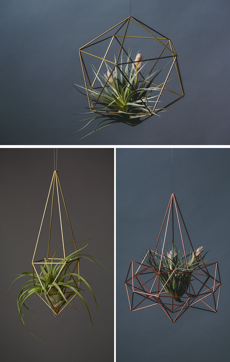12 Elegant Ways To Bring Air Plants Into Your Home // These air plant holders add a modern geometric element to any room.